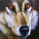 Puzzle  Sunsout-58644 Jurek - Wolf Face