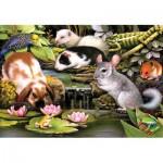 Puzzle  Sunsout-59309 Poolside Pets