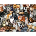Puzzle  Sunsout-60934 XXL Pieces - Cat Collage