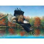 Puzzle  Sunsout-69607 Abraham Hunter - Wetlands Eagle