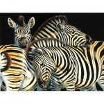 Puzzle  Sunsout-70904 XXL Pieces - Zebras