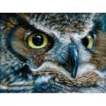 Puzzle  Sunsout-71086 Carla Kurt - Dark Owl