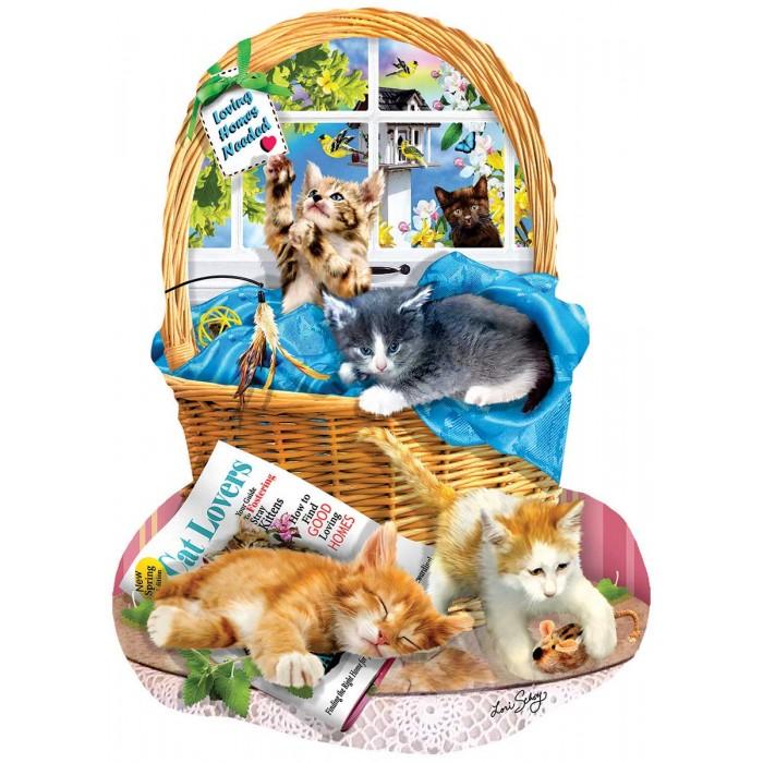 Lori Schory - Free Kitties