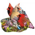 Puzzle  Sunsout-97193 Lori Schory - Spring Cardinals