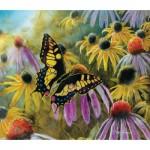 Puzzle   Jim Hansel - Swallowtail Vistor