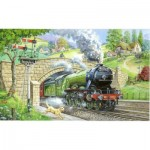 Puzzle  The-House-of-Puzzles-1448 XXL Pieces - Train Spotting