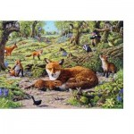Puzzle  The-House-of-Puzzles-1707 Foxley Wood