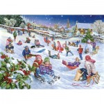 Puzzle  The-House-of-Puzzles-2933 Sledging