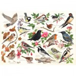 Puzzle   Birds In My Garden