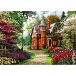 Puzzle  Trefl-10355 Dominic Davison: Victorian House