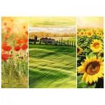 Puzzle  Trefl-10410 Sunny Tuscany