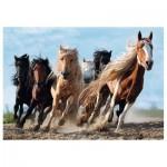 Puzzle  Trefl-10446 Galopping Horses