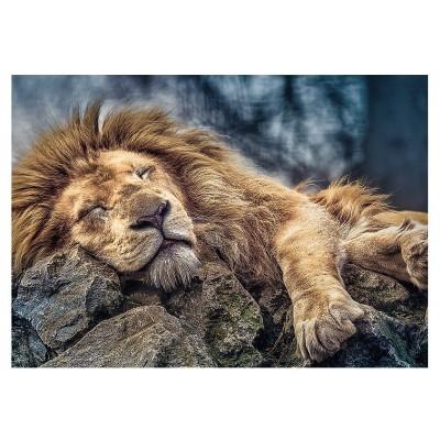 Puzzle Trefl-10447 Sleeping Lion