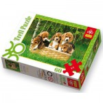 Puzzle  Trefl-17166 Beagle puppies: a cute basket