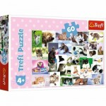 Puzzle  Trefl-17332 Cats World