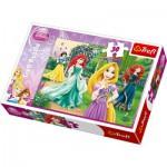 Puzzle  Trefl-18172 The Disney Princesses - Elegance
