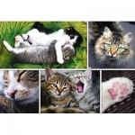 Puzzle  Trefl-26145 Collage - Cats