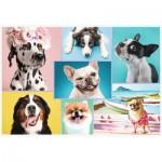 Puzzle  Trefl-26186 Cute dogs