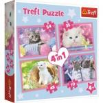 Trefl-34330 4 Puzzles - Kittens