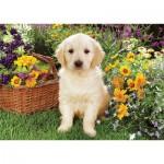 Trefl-37160 Jigsaw Puzzle - 500 Pieces - Little Labrador in the Garden