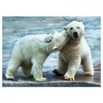 Puzzle  Trefl-37270 Polar bears