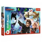 Puzzle   Dreamworks - Dragons