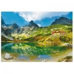 Puzzle   Tatras, Slovakia