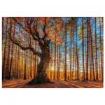 Wentworth-640101 Wooden Puzzle - The King of the Forest