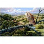 Wooden Puzzle - Barn Owl