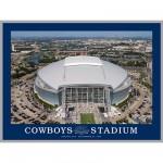 White-Mountain-660 Jigsaw Puzzle - 550 Pieces - Cowboy Stadium, Dallas, Texas