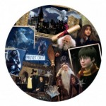Puzzle  Winning-Moves-02480 Harry Potter (TM) Philosopher's Stone